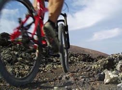 Tommy's Bikes Lanzarote - first bike rental and tour-company on Lanzarote